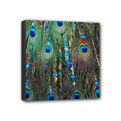 Peacock Jewelery Mini Canvas 4  X 4