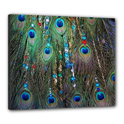 Peacock Jewelery Canvas 24  X 20