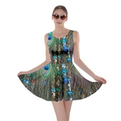 Peacock Jewelery Skater Dress