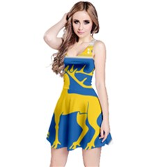 Coat of Arms of Aland Reversible Sleeveless Dress