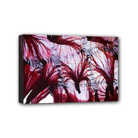 Jellyfish Ballet Wind Mini Canvas 6  x 4