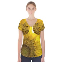 Plant Nature Leaf Flower Season Short Sleeve Front Detail Top
