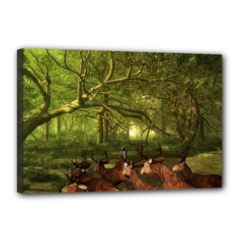 Red Deer Deer Roe Deer Antler Canvas 18  x 12