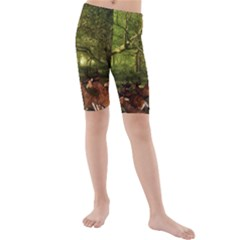 Red Deer Deer Roe Deer Antler Kids  Mid Length Swim Shorts