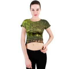 Red Deer Deer Roe Deer Antler Crew Neck Crop Top