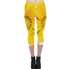Transparent Flower Summer Yellow Capri Leggings