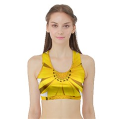 Transparent Flower Summer Yellow Sports Bra With Border