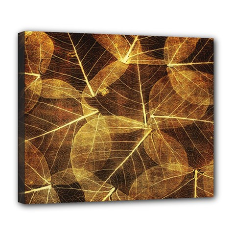 Leaves Autumn Texture Brown Deluxe Canvas 24  x 20