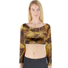 Leaves Autumn Texture Brown Long Sleeve Crop Top