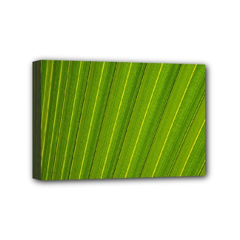 Green Leaf Pattern Plant Mini Canvas 6  x 4