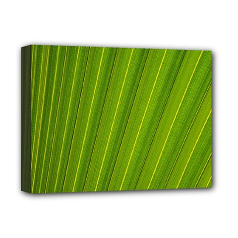 Green Leaf Pattern Plant Deluxe Canvas 16  x 12
