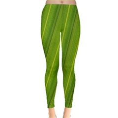 Green Leaf Pattern Plant Leggings