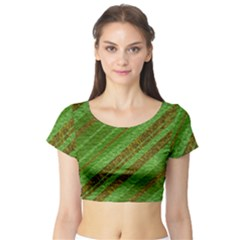 Stripes Course Texture Background Short Sleeve Crop Top (tight Fit)