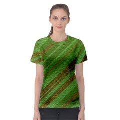 Stripes Course Texture Background Women s Sport Mesh Tee