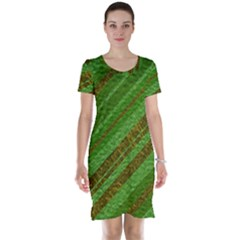 Stripes Course Texture Background Short Sleeve Nightdress