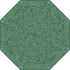 Illustration Green Grains Line Folding Umbrellas