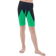 Soaring Mountains Nexus Black Green Kids  Mid Length Swim Shorts
