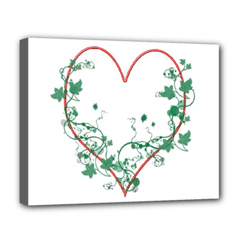 Heart Ranke Nature Romance Plant Deluxe Canvas 20  x 16