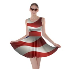Flag United States Stars Stripes Symbol Skater Dress