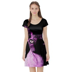 Pink Sphynx cat Short Sleeve Skater Dress