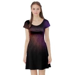 Point Light Luster Surface Short Sleeve Skater Dress