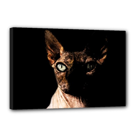 Sphynx cat Canvas 18  x 12