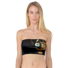 Sphynx cat Bandeau Top