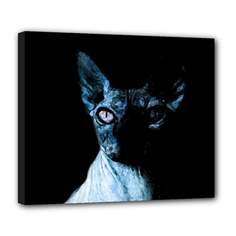 Blue Sphynx cat Deluxe Canvas 24  x 20
