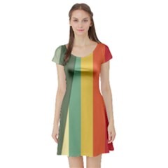 Texture Stripes Lines Color Bright Short Sleeve Skater Dress