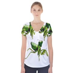 Mantis Short Sleeve Front Detail Top