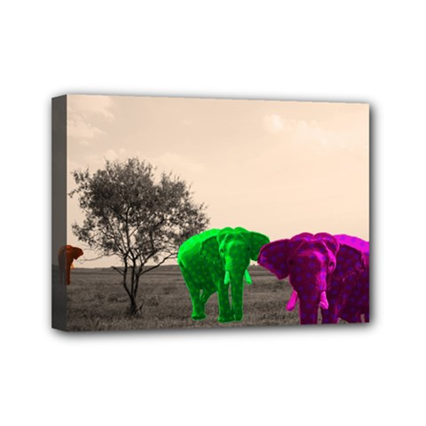 Africa  Mini Canvas 7  x 5