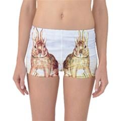 Rabbits  Boyleg Bikini Bottoms