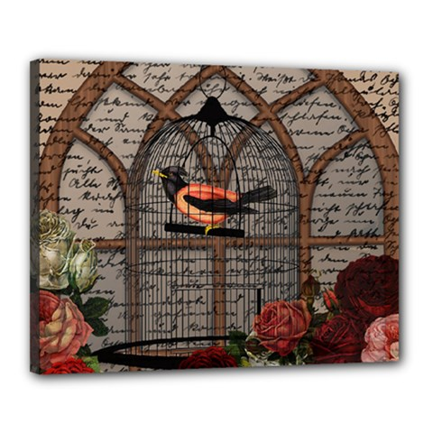 Vintage Bird In The Cage Canvas 20  X 16