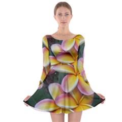 Premier Mix Flower Long Sleeve Skater Dress