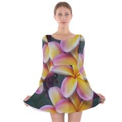 Premier Mix Flower Long Sleeve Velvet Skater Dress