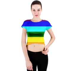Rainbow Crew Neck Crop Top