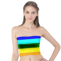 Rainbow Tube Top