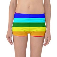 Rainbow Boyleg Bikini Bottoms