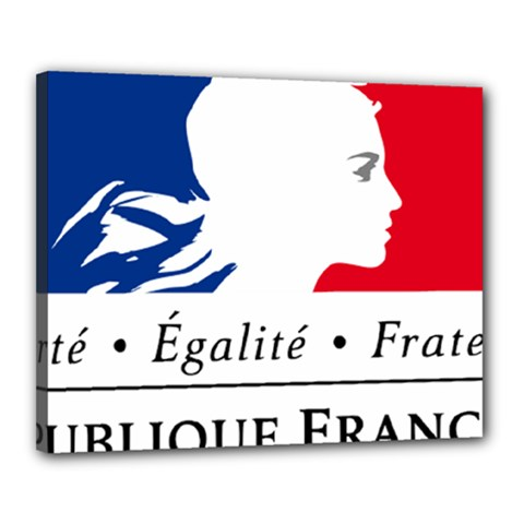 Symbol of the French Government Canvas 20  x 16