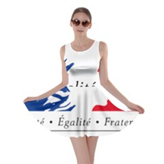 Symbol of the French Government Skater Dress