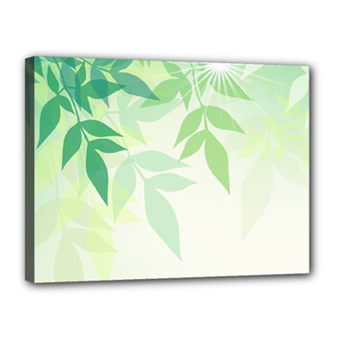 Spring Leaves Nature Light Canvas 16  X 12