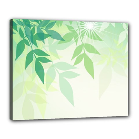Spring Leaves Nature Light Canvas 20  x 16