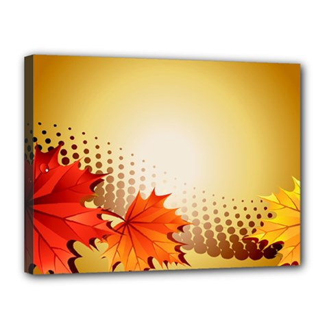 Background Leaves Dry Leaf Nature Canvas 16  x 12