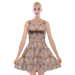 Nature Collage Print Velvet Skater Dress