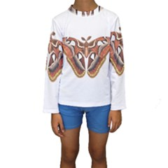 Butterfly Animal Insect Isolated Kids  Long Sleeve Swimwear