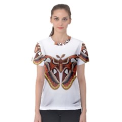 Butterfly Animal Insect Isolated Women s Sport Mesh Tee