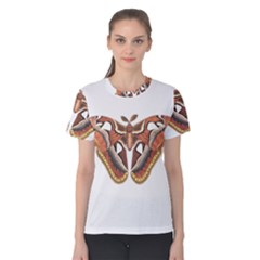 Butterfly Animal Insect Isolated Women s Cotton Tee