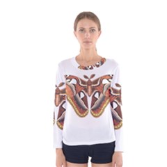 Butterfly Animal Insect Isolated Women s Long Sleeve Tee