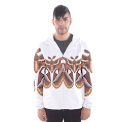 Butterfly Animal Insect Isolated Hooded Wind Breaker (Men)