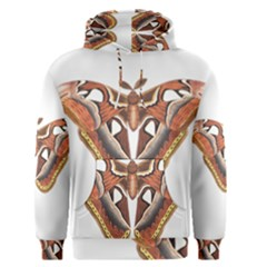 Butterfly Animal Insect Isolated Men s Pullover Hoodie